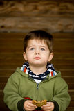 Cute little boy eating a cookie. Photograph of a cute, blue-eyed, brown-haired little boy in a green sweatshirt looking upward while eating a cookie Stock Photography