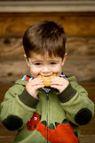 Cute little boy eating a cookie. Photograph of a cute, brown-haired little boy in a green sweatshirt eating a cookie royalty free stock photography