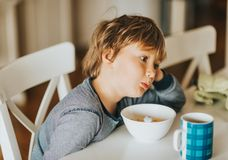Cute little boy eating his cereals with milk royalty free stock images