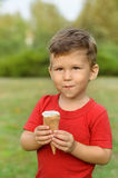 Cute little boy eating ice cream. In a park Stock Photography