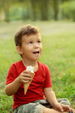 Cute little boy eating ice cream. Sitting on the grass in the park Stock Photo