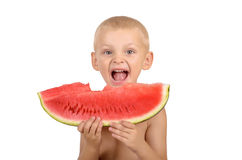 Cute little boy eating watermelon. Isolated on white background Royalty Free Stock Images
