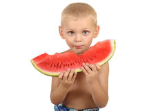 Cute little boy eating watermelon. Isolated on white background Stock Image