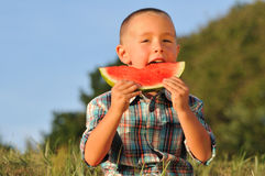 Cute little boy eating Watermelon royalty free stock photo