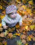 Cute little boy enjoying autumn season Royalty Free Stock Photography