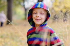 Cute little boy enjoying autumnal nature. Portrait of boy in Autumn Woods. royalty free stock image