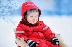 Cute little boy enjoying a sleigh ride Royalty Free Stock Photos