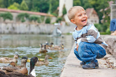 Cute little boy feeding ducks Royalty Free Stock Photo