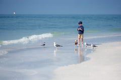 Cute little boy feeding seagulls on tropical beach Stock Photo