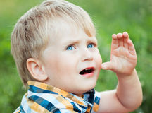 A cute little boy in a field of green grass Stock Photo
