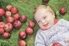 A Cute little boy in the garden and picking apple Stock Photos