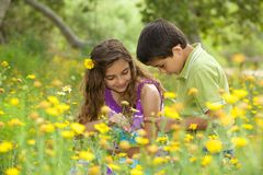 Cute Little Boy and Girl Outside in a Flower Field Stock Photos