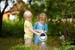 Cute little boy and girl watering plants in the garden at summer sunny day. Mommy little helpers stock images