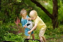 Cute little boy and girl watering plants in the garden at summer sunny day. Mommy little helpers stock photography