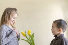 A cute little boy gives flowers to a girl who is older than him. The concept of love and friendship stock photo