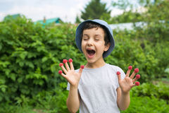 Cute little boy glad to have a many berries Stock Photography