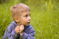 Cute little boy in grass Stock Images