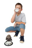 Cute little boy and grey kitten both drinking milk Stock Photography