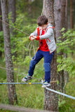 Cute little boy having fun outdoors climbing on Stock Photography