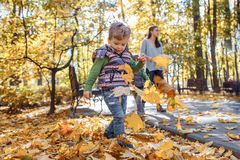 A cute little boy having fun in the park in autumn stock photo
