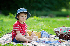 Cute little boy, having pancakes outdoors on picnic, eating fres Royalty Free Stock Photo