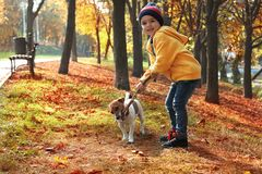 Cute little boy with his pet in park royalty free stock image