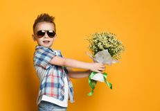 Cute little boy holding a bouquet of flowers. Daisies. Mothers Day. International Women`s Day. Portrait of a happy little boy on a yellow background. Spring royalty free stock photography