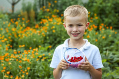 Cute little boy holding bowl with strawberries. Cute little boy holding a bowl with strawberries Royalty Free Stock Image