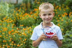 Cute little boy holding bowl with strawberries.  Stock Photo
