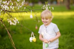 Cute little boy hunts for easter egg on branch of flowering tree royalty free stock photos