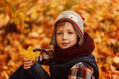 Cute little boy infunny hat and warm scarf at golden autumn in park. Royalty Free Stock Images