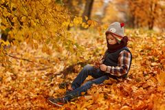 Cute little boy infunny hat and warm scarf at golden autumn in park. Royalty Free Stock Image