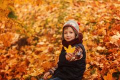 Cute little boy infunny hat and warm scarf at golden autumn in park. Stock Images