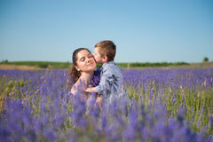 Cute little boy kissing his beautiful mother with her eyes closed with pleasure. On the lavender field stock images
