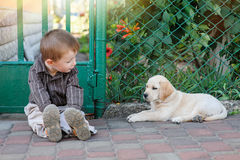 Cute little boy kneeling with his puppy labrador smiling at camera Stock Photography