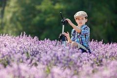 Cute little boy in lavender field Stock Image