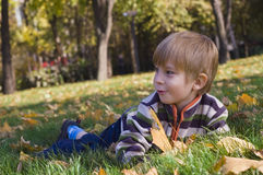 Cute little boy lies on a fall lawn Stock Photo