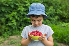 Cute little boy looks to the dish with a berries in a garden Royalty Free Stock Images