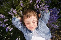 Cute little boy lying among flowers in blossom meadow in summer day leisure Royalty Free Stock Images