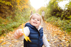 Cute little boy outside in nature on a sunny day Royalty Free Stock Photos