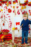 Cute little boy painting apples in autumn Stock Images