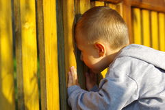Little boy peeping. Cute little boy peeping in the garden stock photos