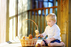 Free Cute Little Boy Picking Mushroom In Basket Royalty Free Stock Photo - 84912195