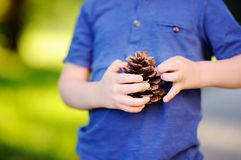 Cute little boy playing with big pine cone outdoors Royalty Free Stock Photo
