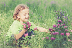 Cute little boy  playing with flowers in  park Stock Photos