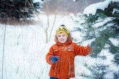 Cute little boy playing with snow in winter forest. Royalty Free Stock Photography