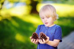 Cute little boy playing with two big pine cones outdoors Royalty Free Stock Photos