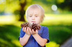 Cute little boy playing with two big pine cones outdoors Royalty Free Stock Images