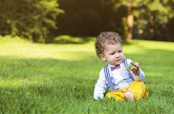 Cute little boy plays in the park. Portrait of cute little boy plays in the park Royalty Free Stock Photo