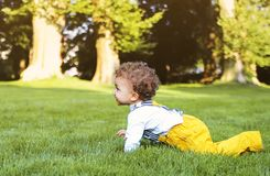 Cute little boy plays in the park. Portrait of cute little boy plays in the park Royalty Free Stock Photos